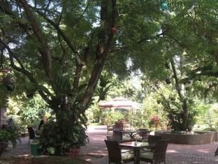 ホテル プレシャス ガーデン オブ サマル ダバオ - レストラン