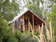 The Canopy Rainforest Treehouses | Australia Hotels Atherton Tablelands