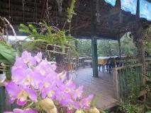 Sechaleunkham Guest House: restaurant