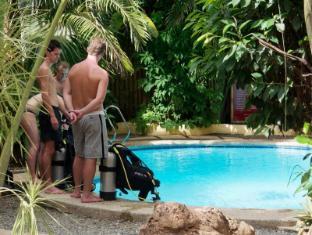 Alona Vida Beach Resort Bohol - Learn Scuba Dive