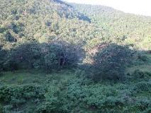 Souksan Hotel: view