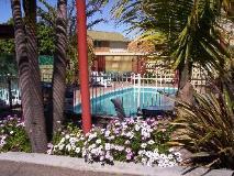 Anchorbell Holiday Apartments: garden