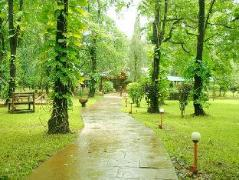 Dudhsagar Spa Resort | India Hotel