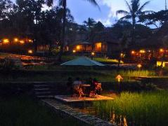 Paddy City Resort | Indonesia Hotel