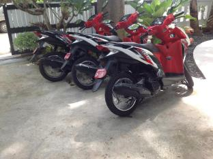 Sandy House Phuket - Motorbike for rent