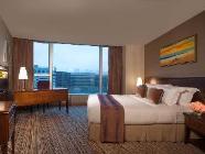Nadstandardni hotelski apartma