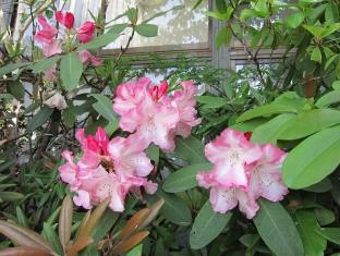 Ryokan Matsukaze Matsumoto - Garden
