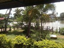 Pan's Residence: view