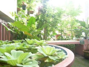 City Guest House Chiang Mai - Garden