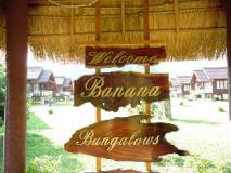 Banana Bungalow: view