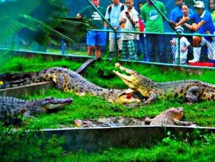 Piazza Luna Tower Davao City - Nearby Attraction - Crocodile Farm