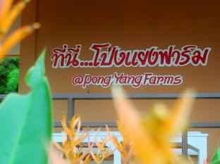 Pong Yang Farms and Resort Chiang Mai - Facilities
