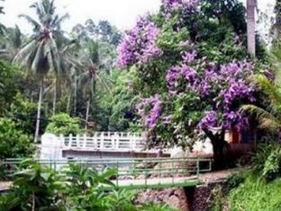 Bumi Kedaton Resort Bandar Lampung - Garden