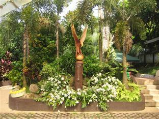 Davao Eagle Ridge Resort Davao City - גינה