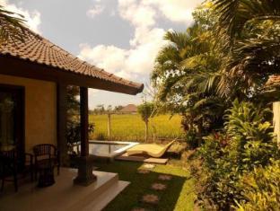 Villa Mandi Bali - Apkārtne