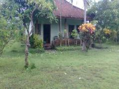 Hepi Bungalow Lovina Indonesia