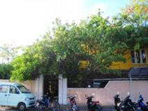 Male City and Airport Hotels   exterior