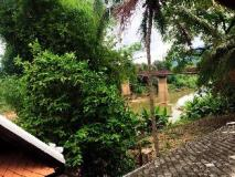 Cold River Guest House: view