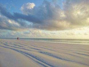 /domokuchu-beach-bungalows/hotel/zanzibar-tz.html?asq=GzqUV4wLlkPaKVYTY1gfioBsBV8HF1ua40ZAYPUqHSahVDg1xN4Pdq5am4v%2fkwxg