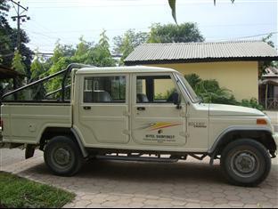 Hotel Rainforest Chitwan - परिवेश