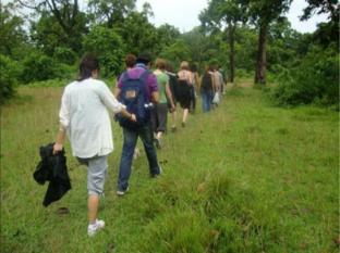 Hotel Rainforest Chitwan - खेलकूद और गतिविधियां
