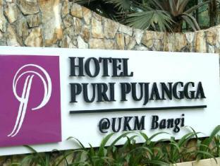 푸리 푸장가 호텔