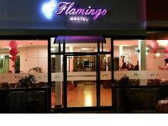 Flamingo Hostel | Philippines Budget Hotels