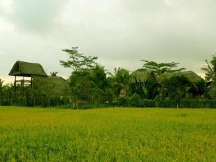 Villa Prana Shanti Bali - Exterior