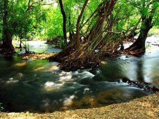 /natural-park-resort-de-wang-thong/hotel/phitsanulok-th.html?asq=jGXBHFvRg5Z51Emf%2fbXG4w%3d%3d