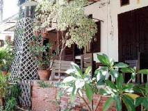 Mojo Guesthouse: exterior