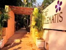 The Clematis Hotel: entrance