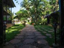 The Clematis Hotel: garden