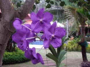 Baan Sai Yuan Phuket - Vrt