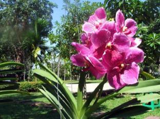Baan Sai Yuan Phuket - Jardín