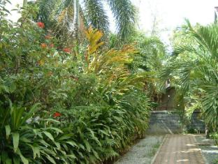 Baan Rosa Phuket - Garden