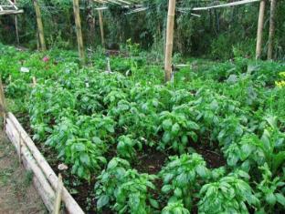 Bali Eco Village Bali - Garden