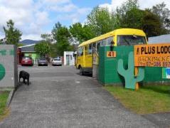 A Plus Backpackers Lodge | New Zealand Budget Hotels