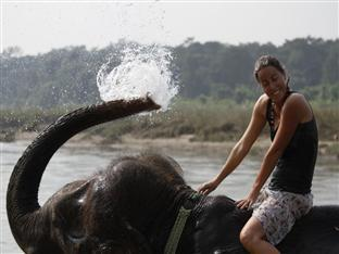 Chitwan Adventure Resort Chitwan - Divertimento e svago