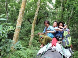 Hotel Jungle Vista Читван - Отдых и развлечения
