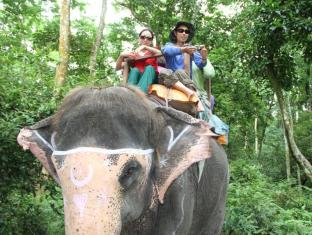 Hotel Jungle Vista Chitwan - Facilităţi de recreere