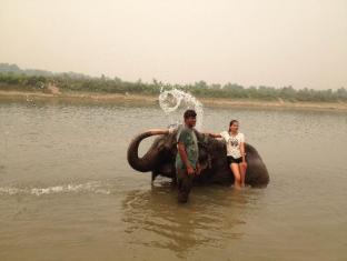 Hotel Jungle Vista Chitwan - Lähistön nähtävyydet