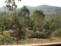 Khoun & Khone Bungalow: view