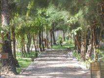 Pleasant View Resort: garden
