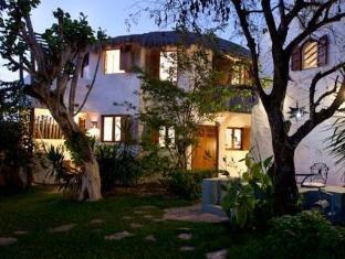 /tamarindo-b-b/hotel/cozumel-mx.html?asq=jGXBHFvRg5Z51Emf%2fbXG4w%3d%3d