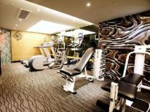 The Luxe Manor: fitness room