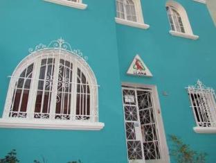 /red-psycho-llama-eco-hostel/hotel/lima-pe.html?asq=jGXBHFvRg5Z51Emf%2fbXG4w%3d%3d