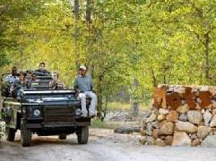 Motswari Private Game Reserve Resort | South Africa Budget Hotels