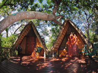 /panzi-bushcamp/hotel/kruger-national-park-za.html?asq=jGXBHFvRg5Z51Emf%2fbXG4w%3d%3d