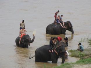 Hotel River Side Chitwan - المرافق الترفيهية