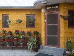 The Yellow House   Nepal Budget Hotels